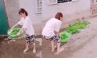 Cô gái trổ tài vẩy rau khiến cả rổ rơi xuống đất