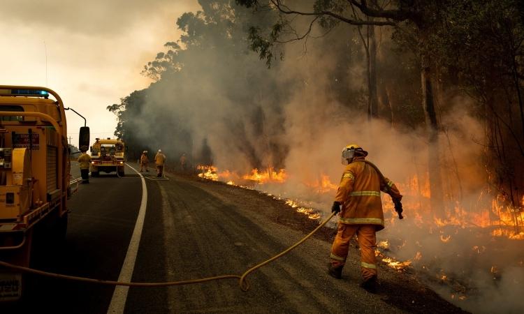 Lực lượng cứu hoả dập tắt đám cháy ở cao tốc Prince, Australia hôm 5/1. Ảnh: NYTimes.