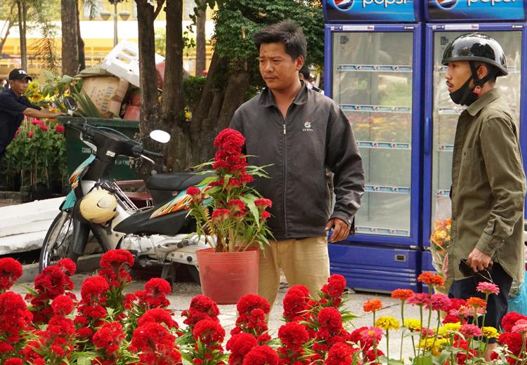 Khách chọn mua hoa trưa 24/1 tại công viên 23/9. Ảnh: Mạnh Tùng
