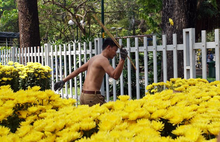 Đạt đùng cây đập nát hoa. Ảnh: Mạnh Tùng.