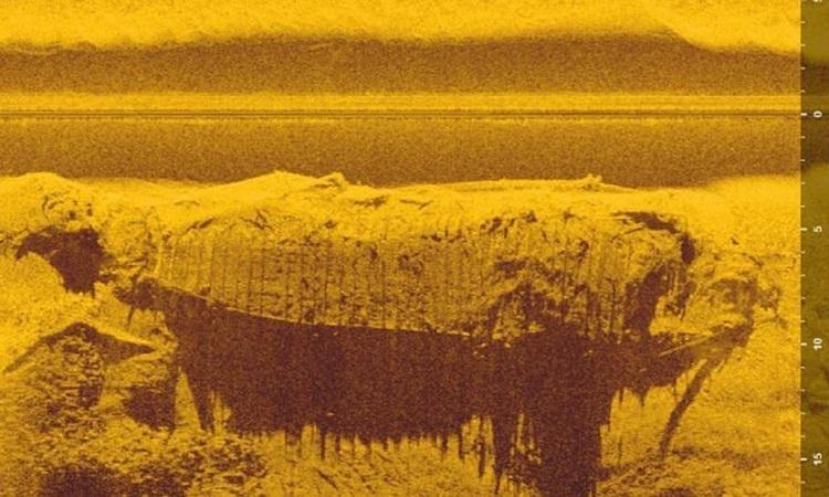 Hình ảnh sóng âm của xác tàu dưới nước. Ảnh: Newsweek.