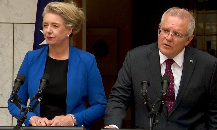 Bộ trưởng Nông nghiệp Bridget McKenzie (trái) và Thủ tướng Morrison (phải) trong cuộc họp báo hôm 14/1. Ảnh: The Australian.