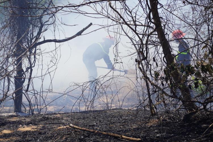 Lực lượng chữa cháy dùng xẻng múc cát chôn các đốm lửa cuối cùng. Ảnh: Việt Quốc