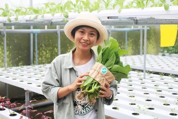 Minh Hiếu – cô gái trẻ từng bỏ phố về quê gắn bó với cây rau ngọn cỏ.