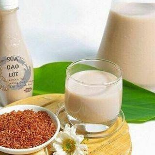 Công nghệ chế biến sữa gạo lứt