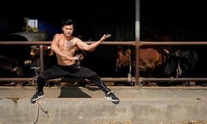 Dùng kungfu và nội công trong đấu bò