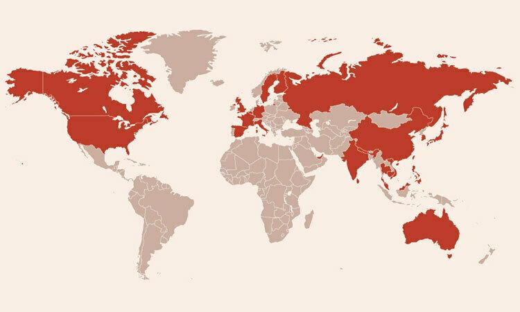 Các nước có bệnh nhân nhiễm virus corona. Bấm vào ảnh để xem đầy đủ.