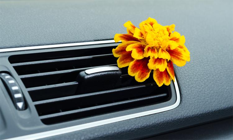Mùi hôi trong xe có thể từ hệ thống điều hòa, do bộ lọc không khí cần thay mới, hoặc từ những món đồ được mang vào xe. Ảnh: CarGurus
