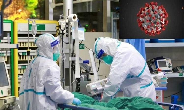 Thử nghiệm vaccine ngừa virus corona trên chuột sẽ cho kết quả trong vài tháng tới. Ảnh: Reuters.