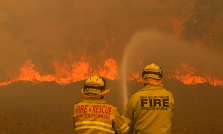 Lính cứu hỏa Australia dập tắt đám cháy ở Old Bar, bang New South Wales, hôm 9/11/2019. Ảnh: Reuters.