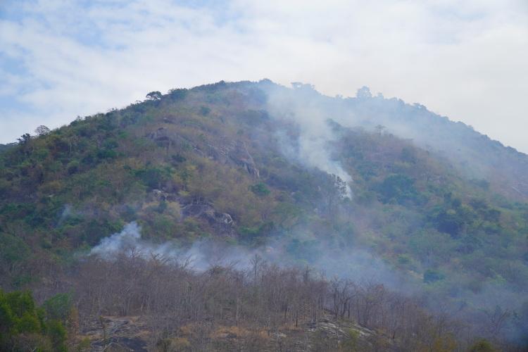 Đám cháy bùng phát và lan ra ở tiểu khu 297, sườn Tây núi Tà Cú. Ảnh: Việt Quốc