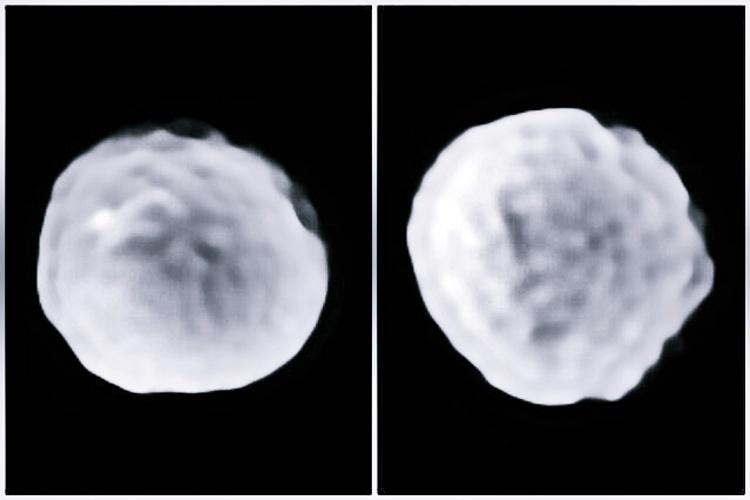 Hai góc chụp của Pallas cho thấy bề mặt có vô số miệng hố do va chạm. Ảnh: Viện Công nghệ Massachusetts