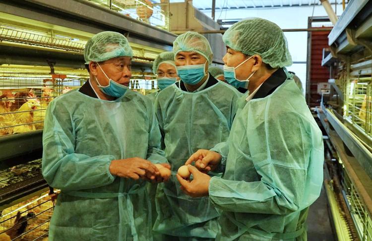 Bộ trưởng Nông nghiệp và Phát triển nông thôn Nguyễn Xuân Cường (ngoài cùng bên phải) kiểm tra công tác phòng chống dịch cúm gia cầm ngày 16/2. Ảnh: Khương Lực.