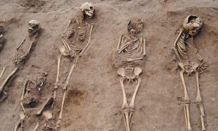 Một tập thể chôn các nạn nhân của đại dịch Cái chết Đenở tu viện Thornton. Ảnh: Đại học Sheffield.