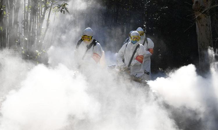Các nhân viên phun thuốc khử trùng để phòng dịch bệnh tại Bạc Châu, tỉnh An Huy. Ảnh: Business Insider.
