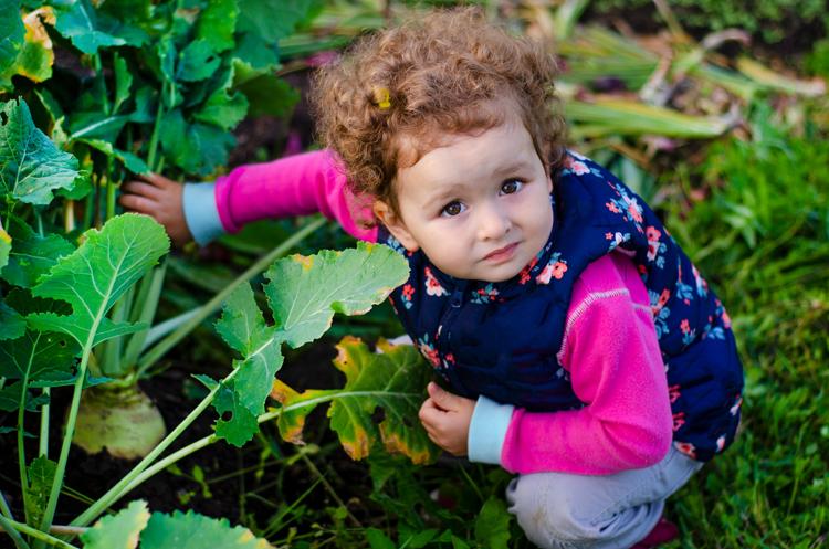 Trẻ em Thụy Điển được khuyến khích chơi ngoài trời. Ảnh: Shutterstock.