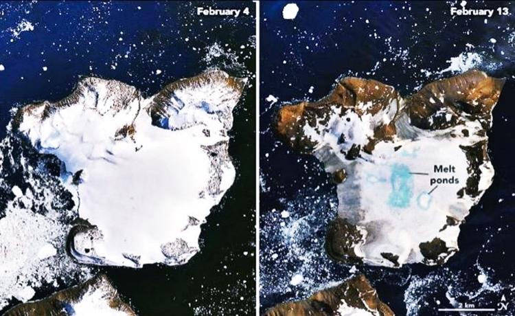 Ảnh vệ tinh khu vực đảo Sif ở vịnh đảo Nam Cực. Ảnh: Peter Neff