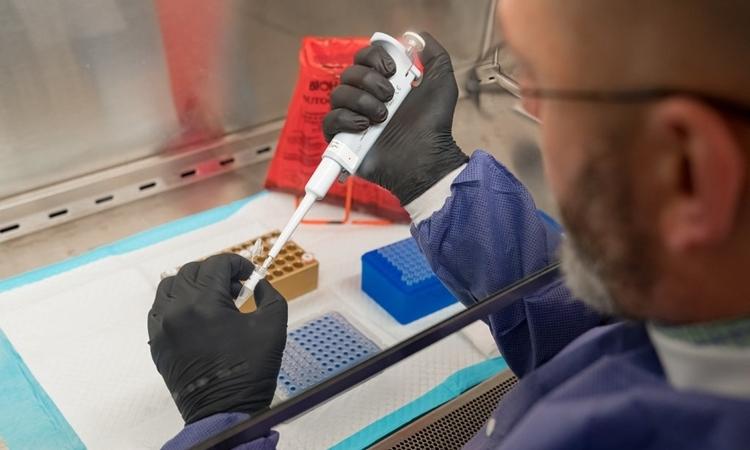 Nhà nghiên cứu tại Phòng thí nghiệm Virus của Sở Y tế bang New York chuẩn bị mẫu xét nghiệm, bang này sử dụng dụng cụ xét nghiệm do mình tự phát triển. Ảnh: Sở Y tế bang New York.