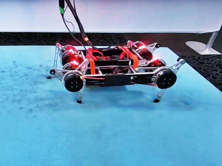 Robot có thể tự học và hoạt động độc lập mà không cần người hướng dẫn hoặc dữ liệu lập trình sẵn. Ảnh: Techxplore