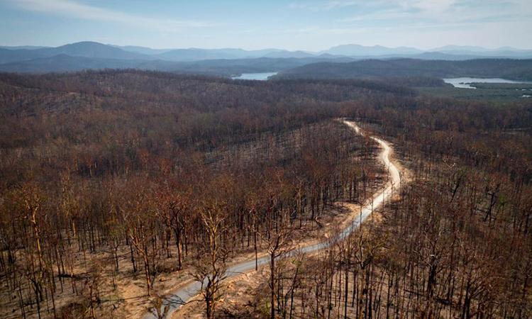 Khung cảnh sau cháy rừng gần vịnh Batemans, Australia. Ảnh: CNN.