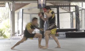 Những đòn thế trong MMA
