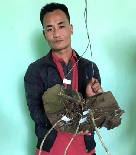 Hiền bên cây lan đột biến giá khoảng tỷ đồng. Ảnh: Khánh Hương.