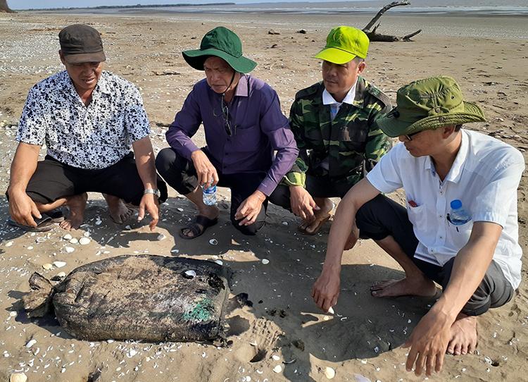 Lực lượng chức năng kiểm tra, thu gom các bao hóa chất lạ dạtvào bờ biển. Ảnh: An Nam