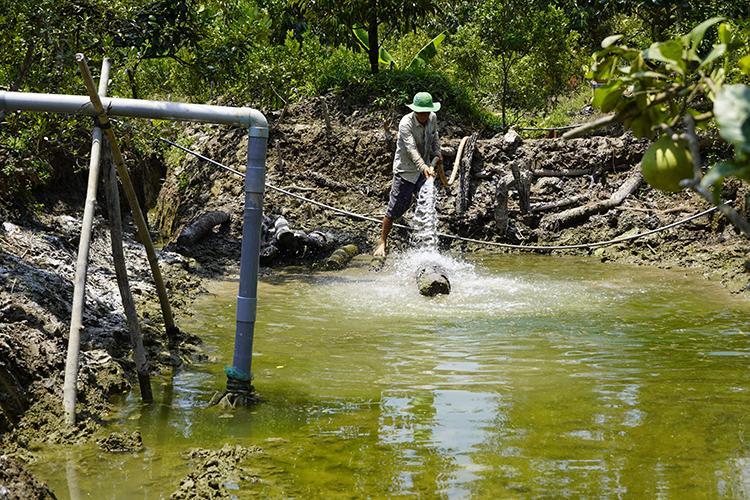 Ông The bơm 8 khối nước ngọt từ ghe chở thuê, giá 700 nghìn đồng vàoao trữ để dành tưới sầu riêng. Ảnh: Hoàng Nam