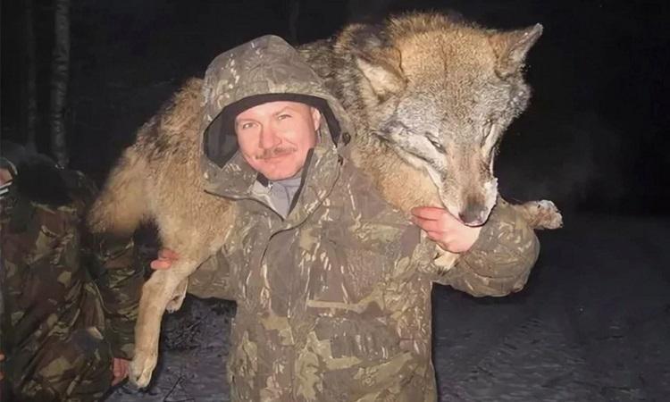 Thợ săn vác xác chó sói trên lưng. Ảnh: Sun.