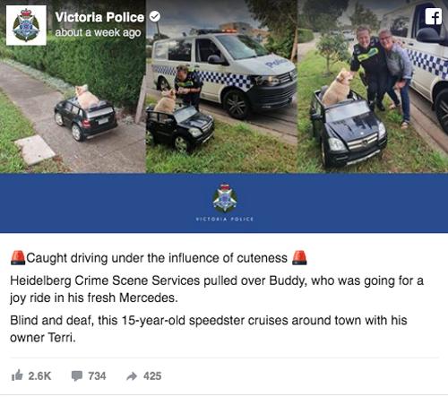 Câu chuyện được chia sẻ trên trang Facebook của cảnh sát Victoria.