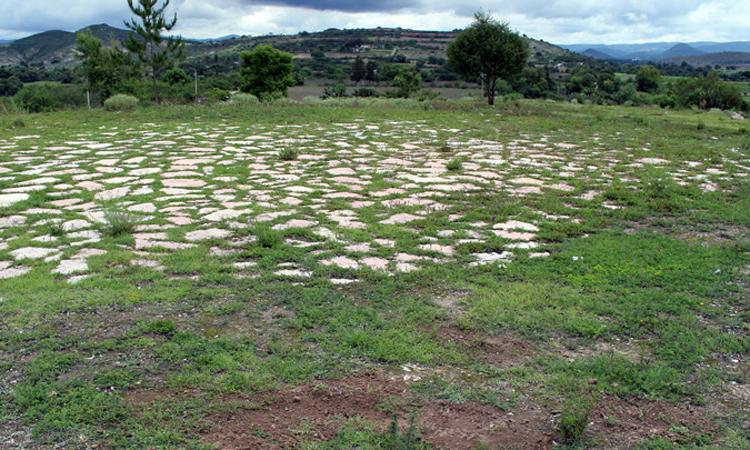 Khu vực phát hiện ra sân bóng cổ xưa ở Etlatongo. Ảnh: Newsweek.