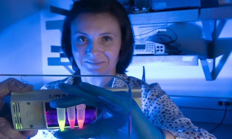 Nhà nghiên cứu Lena Dolgosheina cầm các ống chứa thuốc nhuộm phát quang. Ảnh: Phys.org.