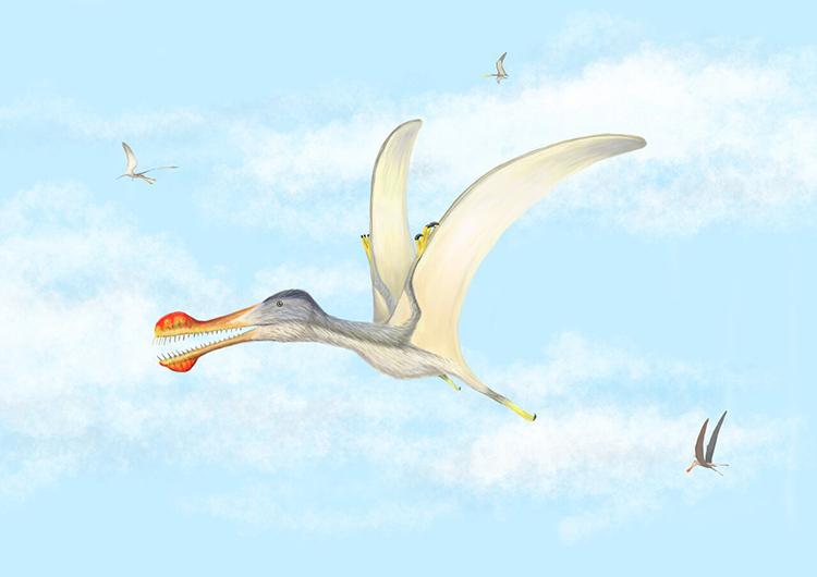 Đồ họa mô phỏng một loài thằn lằn bay có răng. Ảnh: Đại học Baylor.