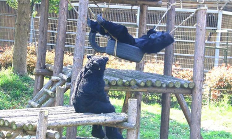 Du khách bất ngờ vì vườn thú dùng thú giả