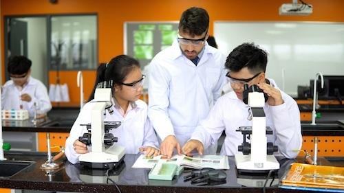 Hiện SIS Đà Nẵng cung cấp chương trình quốc tế cho học sinh từ bậc mẫu giáo đến dự bị đại học và chương trình song ngữ cho học sinh lớp một đến lớp chín.