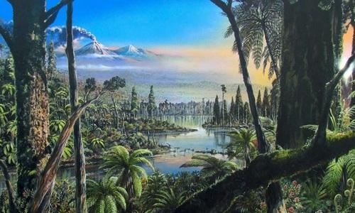 Rừng mưa nhiệt đới từng bao phủ Nam Cực thời cổ đại