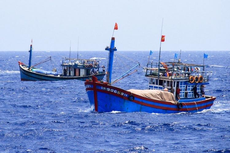 Tàu cá của ngư dân Việt Nam hoạt động ở Hoàng Sa. Ảnh: Nguyễn Đông.