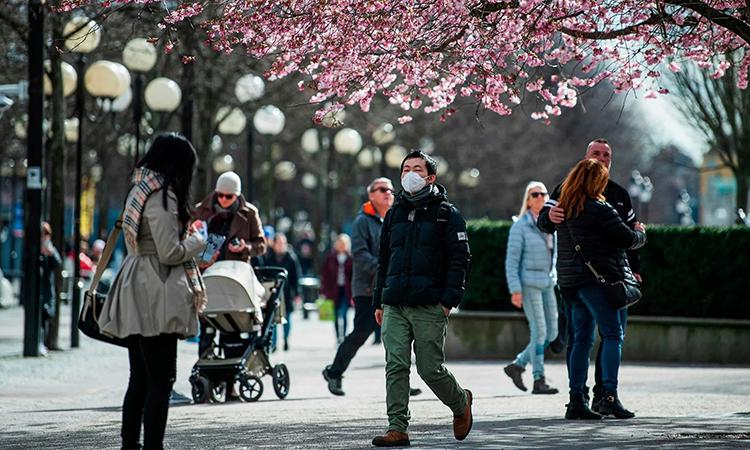 Người dân Thụy Điển tản bộ dưới tán hoa anh đào ở thủ đô Stockholm. Ảnh: AFP.