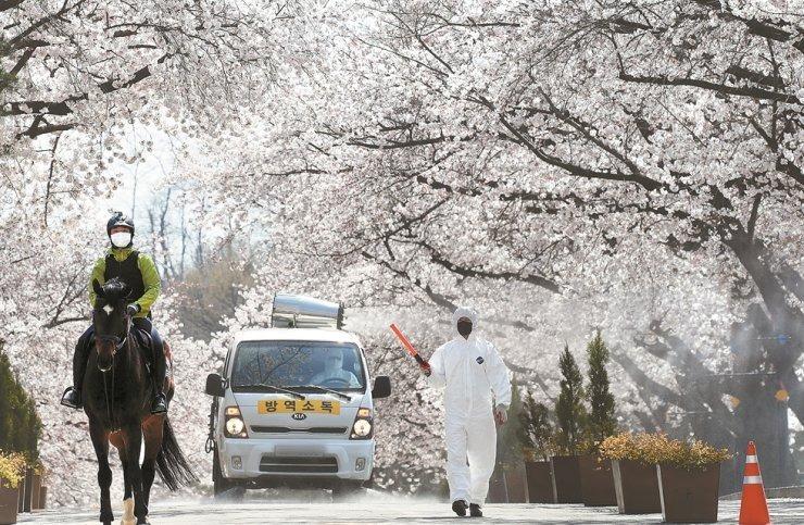 : Nhân viên y tế khử trùng công viên LetsRun tại tỉnh Gyeonggi, Hàn Quốc ngày 5/4. Ảnh: Yonhap.