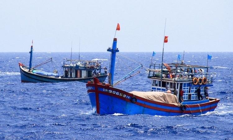 Tàu cá của ngư dân Việt Nam hoạt động ở Hoàng Sa tháng 5/2014. Ảnh: Nguyễn Đông.
