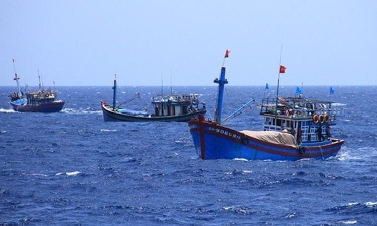 Tàu cá Việt Nam hoạt động trên biển. Ảnh: Văn Đông.