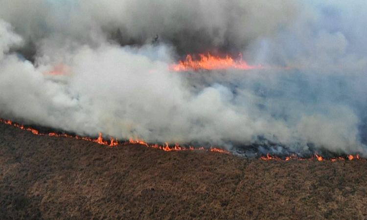 Cháy lớn tàn phá 10% thảm thực vật ởCông viên Quốc gia Biebrza. Ảnh: CGTN.