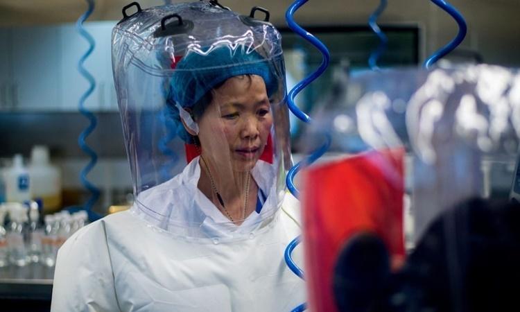 Nhà virus học nổi tiếng Trung Quốc Shi Zhengli. Ảnh: AFP.