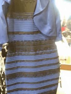 Chiếc váy từng gây tranh cãi. Ảnh: Cecilia Bleasdale.