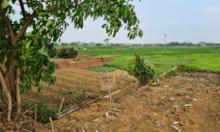 Bài toán săn đất nền giá 500 triệu đồng mùa dịch