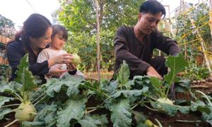 Vợ chồng biến bãi rác thành khu vườn sinh thái