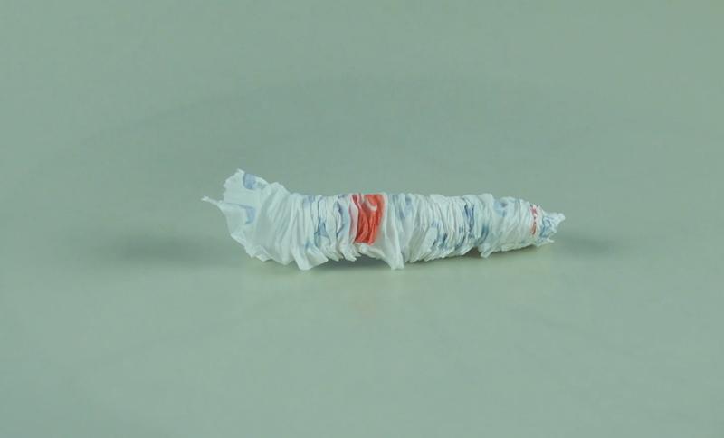 Thí nghiệm con sâu giấy.