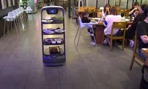 Nhà hàng Hàn Quốc dùng robot để kiểm soát Covid-19