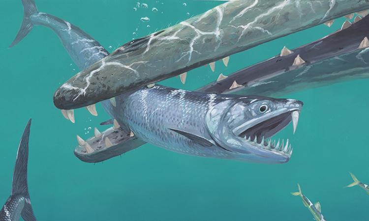 Đồ họa mô phỏng một con Monosmilus chureloides bị kẻ săn mồi tấn công. Ảnh:Joschua Knüppe.