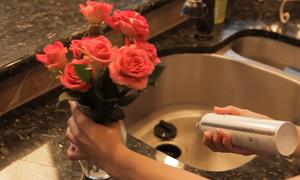 5 mẹo giữ hoa tươi lâu